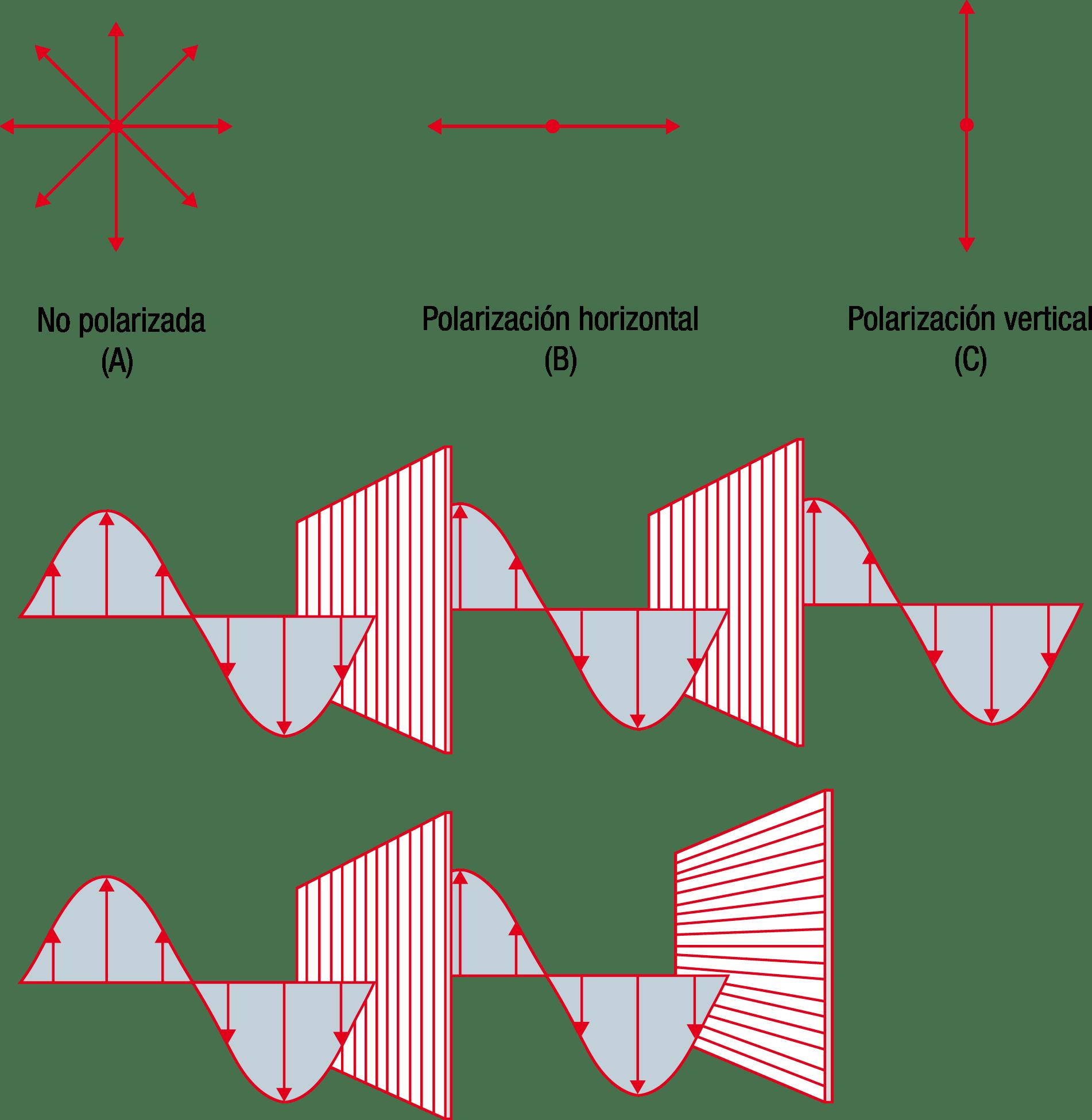 Figura25